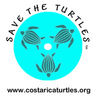 save the turtles npo